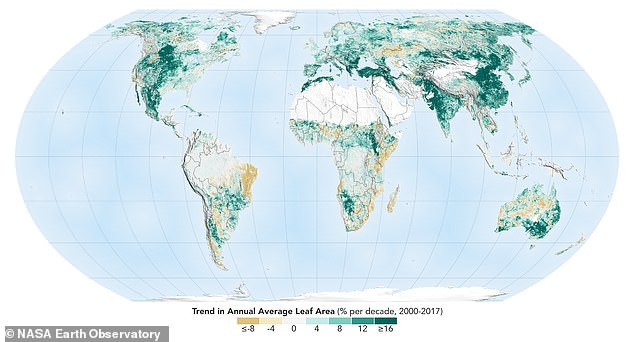 Planting trees has resulted in more than 2 million square miles of extra greenery - the equivalent of more than the Amazon rainforest. Global in crease is not enough to offset the damage done by deforestation, researchers claim