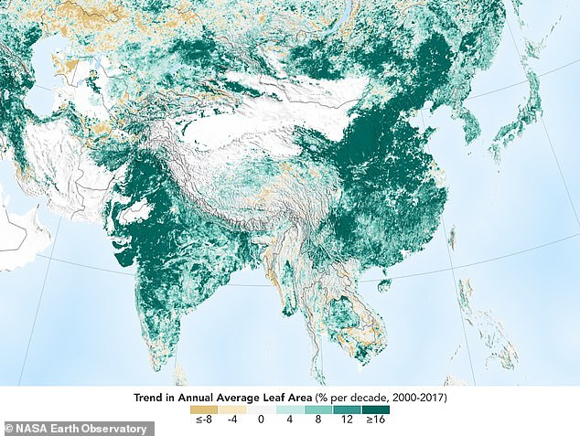 China and India have planted so many trees that the world is now greener than it was 20 years ago. NASA research discovered there is five per cent, on average, more greenery every year compared to the 2000s (pictured)